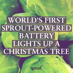 Sprout-Powered Battery Lights Up a Christmas Tree