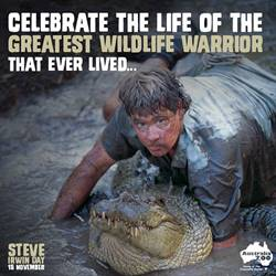 It's Steve Irwin Day and the coolest colour is - khaki!